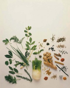 natural products are used to heal in the practice of Naturopathy